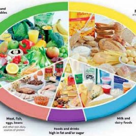 leptin diet for weight loss